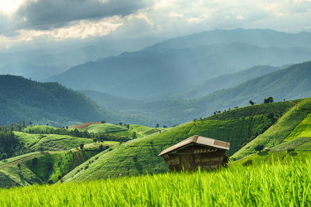 ?Home in natural view of mountain and rice field