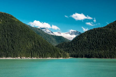 fjords: Kenai River in Alaska flows past forests and mountains in the wilderness, idyllic clear  landscape