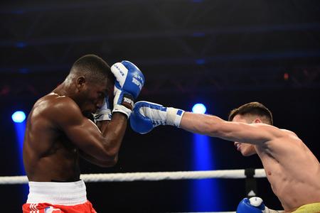 boxing knockout: Kyiv, UKRAINE - January 23, 2014 : Haizel Ekow Tabiri-Essuman (UK) in the ring during boxing fight Ukraine Otamans vs British Lionhearts in Acco International center in Kiev, Ukraine