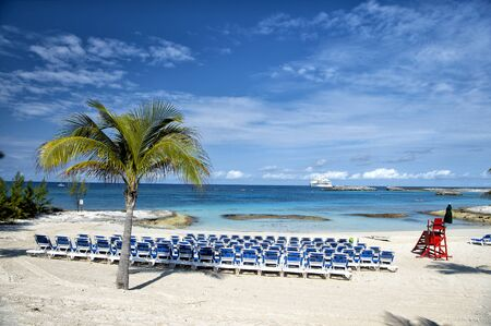 stirrup: Beach with chairs and palm tree on white sand near Great Stirrup Cay, Bahamas sunny day