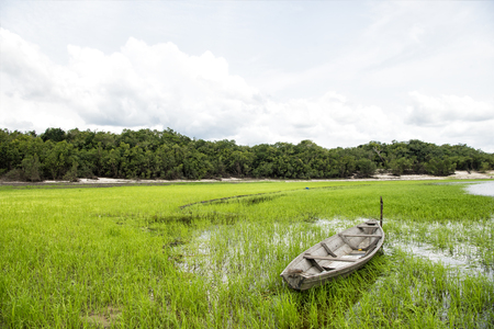 rundown: Old wooden boat abandoned on the coastline. Cloudy sky and run-down boat on water near green grass.