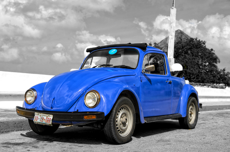ground beetle: Cozumel, Mexico - December 24, 2015: Blue retro small volkswagen beetle cabriolet car standing  empty on ground sunny day outdoor on black and white background
