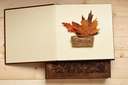 opened bag: Opened book with knitted bag and maple leaves on vintage wooden background, copy space Stock Photo