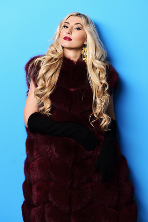 young fashionable sexy pretty woman with beautiful long curly blonde hair in waist coat of burgundy fur and black velvet gloves on blue studio background