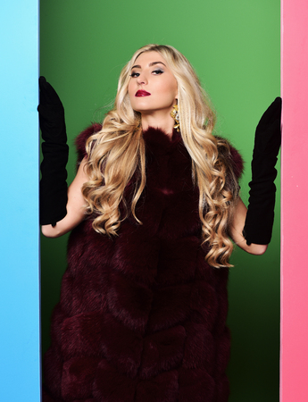 black velvet: young fashionable sexy pretty woman with beautiful long curly blonde hair in waist coat of burgundy fur and black velvet gloves on colorful studio background Stock Photo