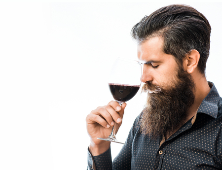 handsome bearded rich man with stylish hair mustache and long beard on serious face in blue fashion shirt holding glass and sniff smell of red wine isolated on white, copy space Stock Photo