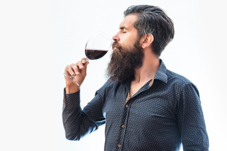handsome bearded rich man with stylish hair mustache and long beard on serious face in blue fashion shirt holding glass and sniff smell of red wine isolated on white Stock Photo