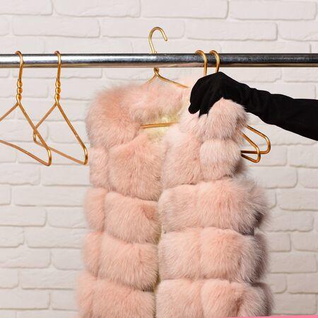 black velvet: female hand in black velvet glove tacking fashionable luxurious waist coat of beige fur from rack on golden hangers on brick wall studio background Stock Photo