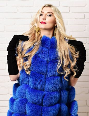 black velvet: young fashionable sexy pretty woman with beautiful long curly blonde hair in waist coat of blue fur and black velvet gloves on brick wall studio background Stock Photo