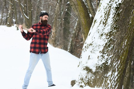 Handsome man or lumberjack, bearded hipster, with beard and moustache in red checkered shirt cuts tree with axe in snowy forest on winter day outdoors on natural background