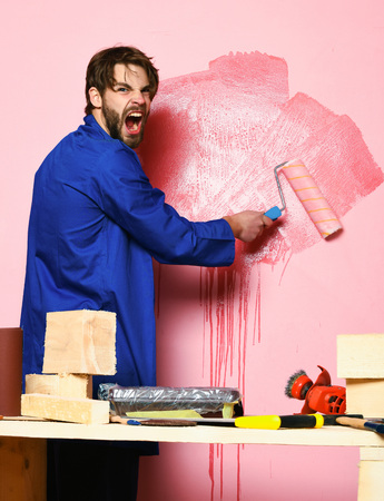 handsome bearded builder man with disheveled hair on shouting face in blue cloak and building tools on table painting wall with paint roller in studio on pink background Stock Photo