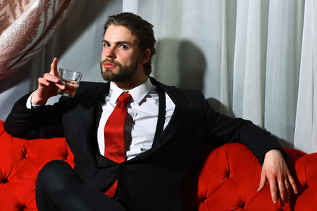 red sofa: bearded man, businessman, long beard, brutal caucasian hipster with moustache holding glass with whiskey has serious face, unshaven guy with stylish hair in suit and red tie sitting on sofa