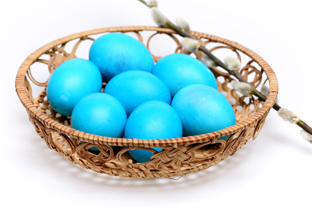 set of traditional eggs painted in blue color inside pottle with pussy willow branch isolated on white background. Happy Easter concept Stock Photo