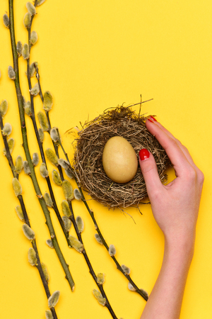 osier: hand of girl with handmade painted egg in nest near willow branch on yellow sunny background. happy easter concept, spring holiday celebration. future life