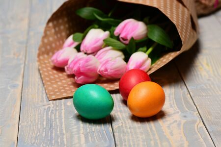 happy easter concept, pink beautiful tulip flower bouquet in paper wrap, traditional colorful painted eggs on wooden background, mothers or womens day spring holiday, greeting and celebration Stock Photo