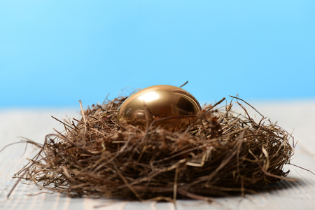 banking and financial concept, bird nest with traditional egg painted in golden metallic color on blue background. Happy Easter, luxury and success, future life, riches and treasure, retirement