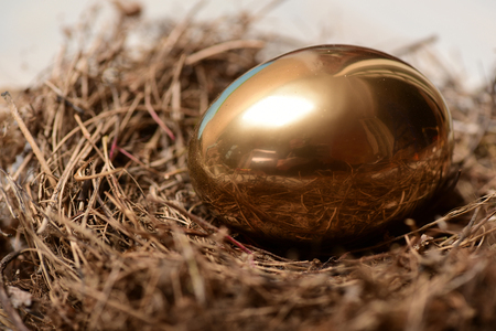 riches and treasure, bird nest with traditional egg painted in golden metallic color on wooden background. Happy Easter concept, luxury and success, future life, retirement