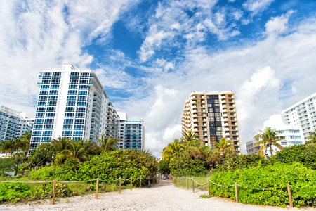 hotel building: miami. south beach. summer vacation, Idyllic sandy path way from beach with green palm trees to high rise, apartment houses or buildings. City skyline. Urban landscape