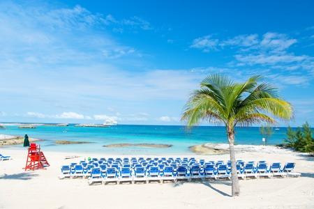 위대한 등 록 Cay, 바하마 화창한 날에 하얀 모래에 파란색의 자와 야자수 해변