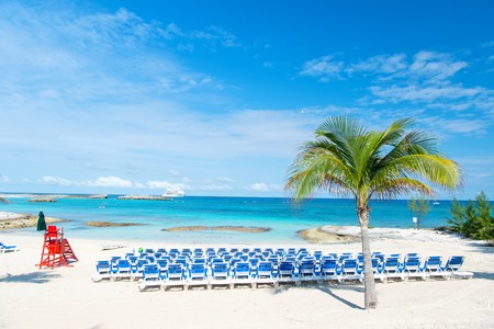 Beach with blue chairs and palm tree on white sand at Great Stirrup Cay, Bahamas sunny day Archivio Fotografico