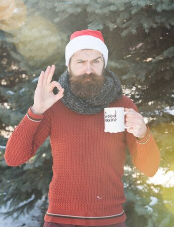 good weather: Frown handsome man in santa claus hat, bearded hipster with beard and moustache gives ok hand gesture with good morning text on cup on sunny winter day outdoors on natural background