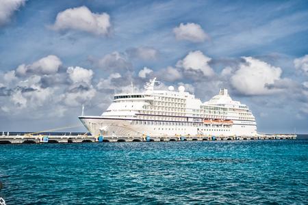 Grande navio de cruzeiro de luxo no porto