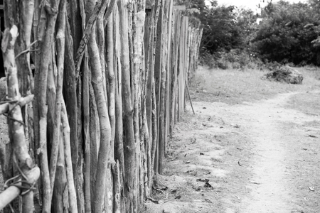 Palisade or fence in countryside on natural background in boca de valeria, brazil. Poverty, construction, lifestyle concept