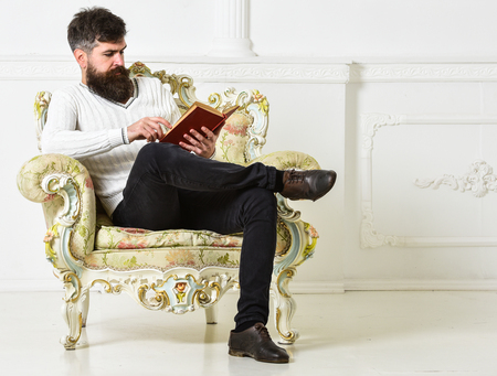 Man with beard and mustache sits on armchair and reading, white wall background. Connoisseur of literature concept. Connoisseur, professor enjoy literature. Macho spends leisure with book Stock Photo