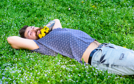 Springtime concept. Hipster with bouquet of dandelions in beard relaxing. Man with beard on smiling face enjoy spring. Bearded man with dandelion flowers in beard lay on meadow, grass background Stock fotó