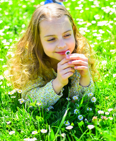 Girl lying on grass, grassplot on background. Sensitivity concept. Child enjoy spring sunny weather while lying at meadow with daisy flowers. Girl on smiling face holds daisy flower, sniffs aroma