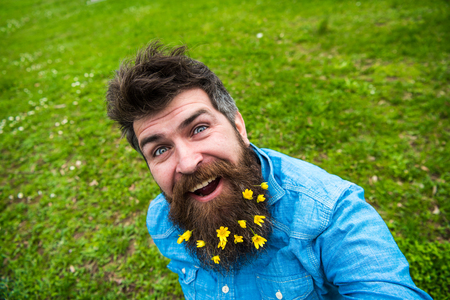 Hipster on happy face sits on grass, defocused. Man with beard enjoys spring, green meadow background. Guy with lesser celandine flowers in beard taking selfie photo. Natural beauty concept