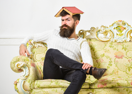 Macho sits with open book on head, like roof. Man with beard and mustache sits on sofa, white wall background. Guy, teacher overdid with teaching, became crazy professor. Overwork concept Stock Photo