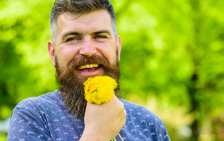Man with beard and mustache on happy face holds bouquet of dandelions. Romantic hipster made bouquet, green nature background, defocused. Bearded man holds yellow dandelions. Romantic concept 免版税图像