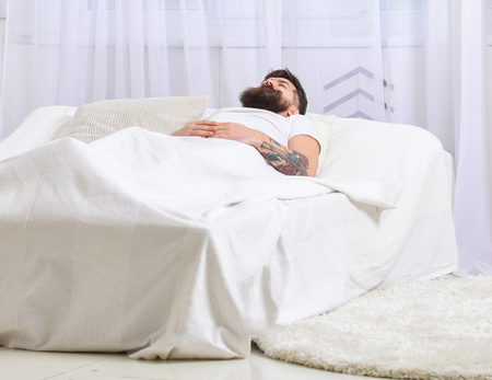Man laying on bed, covered with blanket, white curtains on background. Guy on calm face sleeping on white sheets, pillow. Nap and siesta concept. Macho with beard sleeping, relaxing, having nap, rest