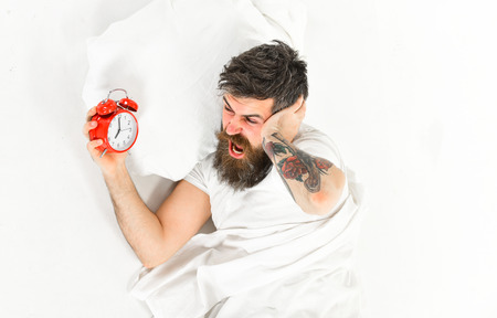 Man with tattoo and beard having trouble waking up with alarm clock, white background. Man with shouting face suffer of alarm.