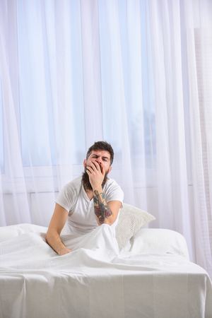 Man in shirt yawning while sit on bed, white curtain on background. Macho with beard and mustache yawning, relaxing, having nap, rest. Guy on sleepy tired face yawning. Sleepyhead concept. Stock Photo
