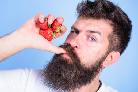 Fresh juice concept. Hipster bearded holds strawberries fist as juice bottle. Man strict face enjoy fresh drink strawberry juice. Man drinks strawberry juice suck thumb as drink straw blue background.