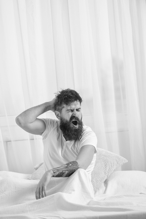 Sleepyhead concept. Guy on sleepy tired face yawning. Man in shirt yawning while sit on bed, white curtain on background. Macho with beard and mustache yawning, relaxing, having nap, rest. Stock Photo