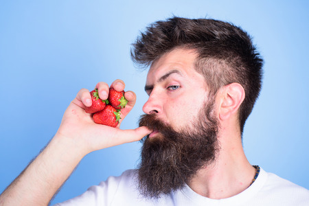 Hipster bearded holds strawberries fist as juice bottle. Man drinks strawberry juice suck thumb as drink straw blue background. Man strict face enjoy fresh drink strawberry juice. Fresh juice concept.