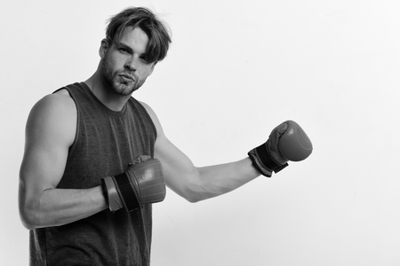 Boxing and sports concept. Athlete with leather box equipment isolated on white background, copy space. Boxer makes hits and punches as training. Man with bristle and serious face wears boxing gloves.