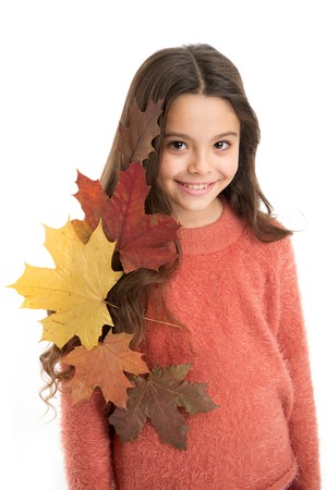 Girl cute kid with fallen leaves isolated on white background. Child enjoy fall season. Dry maple leaves in her hairstyle. Fall season concept. Hair care in autumn tips and ideas. Fall is on her mind.