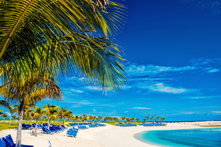 Coast with lounge chairs on white sand, green palm trees Imagens