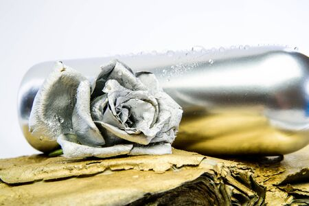 floristics business. Vintage retro. wealth and richness. grunge beauty. luxury and success. metallized antique decor. silver rose flower in bottle. Home decor Imagens - 128884357