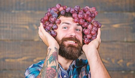 Winery cheerful worker. Farmer with grapes. Winery concept. Man with beard hold bunch of grapes on head wooden background. Vintner proud of grapes harvest. Handsome bearded hipster owner of winery Stock Photo