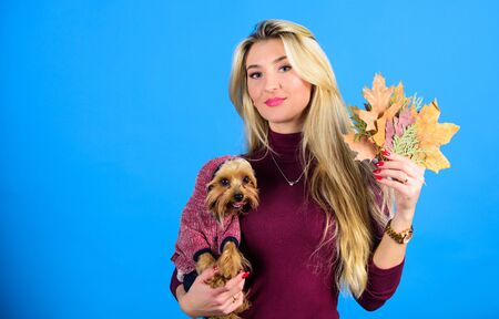 Dressing your dog for cold weather. Dogs need clothes. Which dog breeds should wear coats. Woman carry yorkshire terrier. Girl attractive blonde hug cute dog. Apparel and accessories. Pet supplies Stockfoto