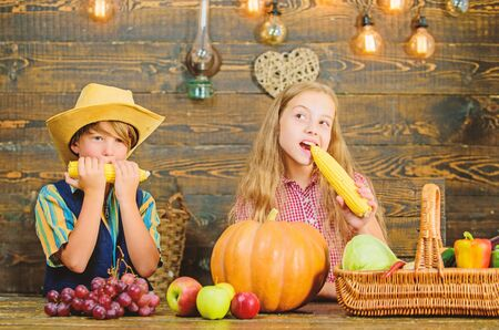 Celebrate harvest festival. Children play corncobs vegetables wooden background. Kids girl boy celebrate harvest festival rustic style. School festival holiday. Elementary school fall festival idea 写真素材