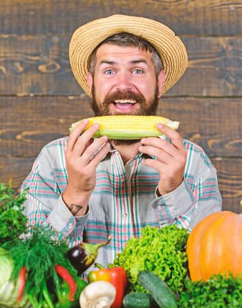 Healthy lifestyle. Homegrown organic harvest benefits. Farmer hold corncob or maize wooden background. Farmer presenting organic homegrown vegetables. Grow organic crops. Community gardens and farms