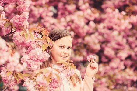 Girl enjoying floral aroma. Pollen allergy concept. Kid enjoy cherry blossom sakura. Kid on pink flowers sakura tree background. Allergy remedy. Child enjoy life without allergy. Sniffing flowers