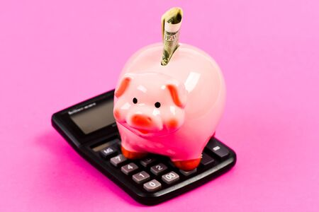 Piggy bank with calculator.