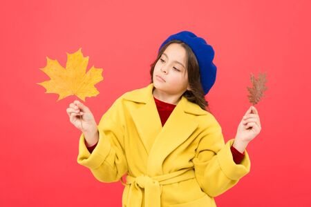 Kid girl cute face hold maple leaf. Stok Fotoğraf - 129262317